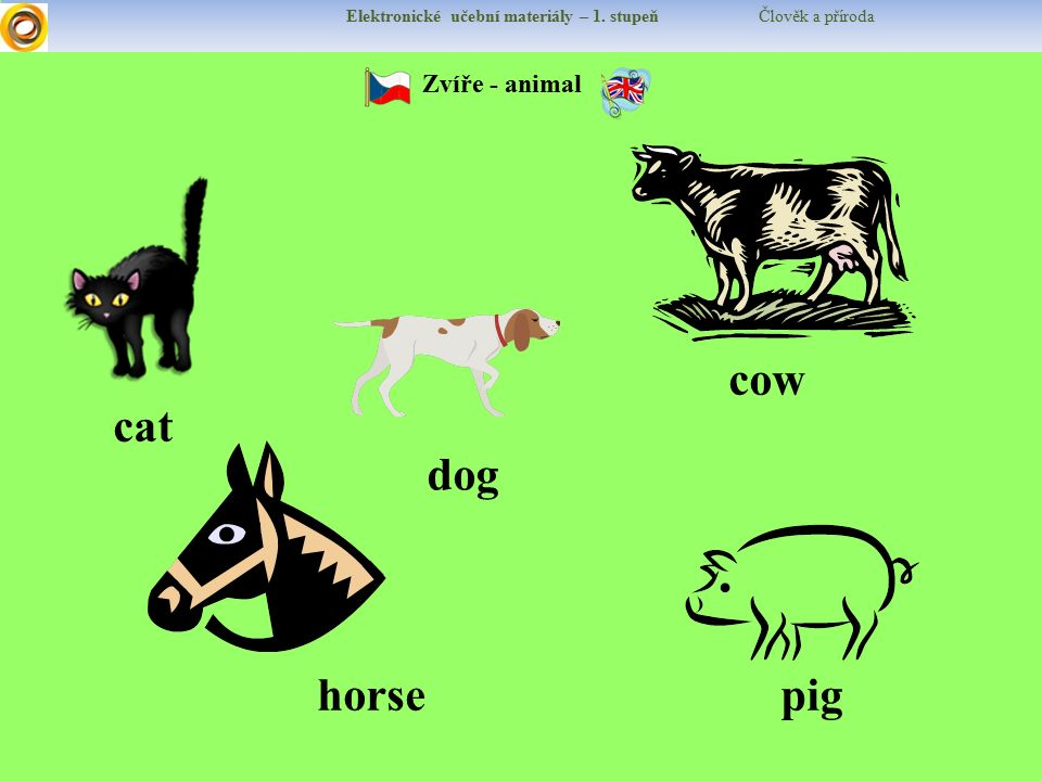 cow cat dog horse pig Zvíře - animal