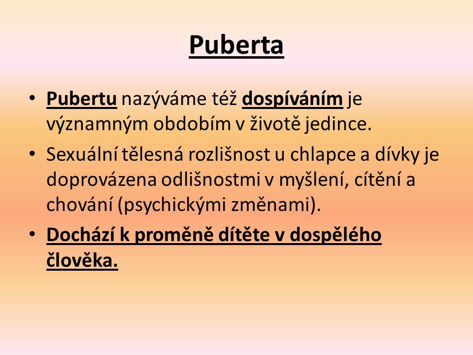 Puberta Pubertu nazýváme též dospíváním je významným obdobím v životě jedince.