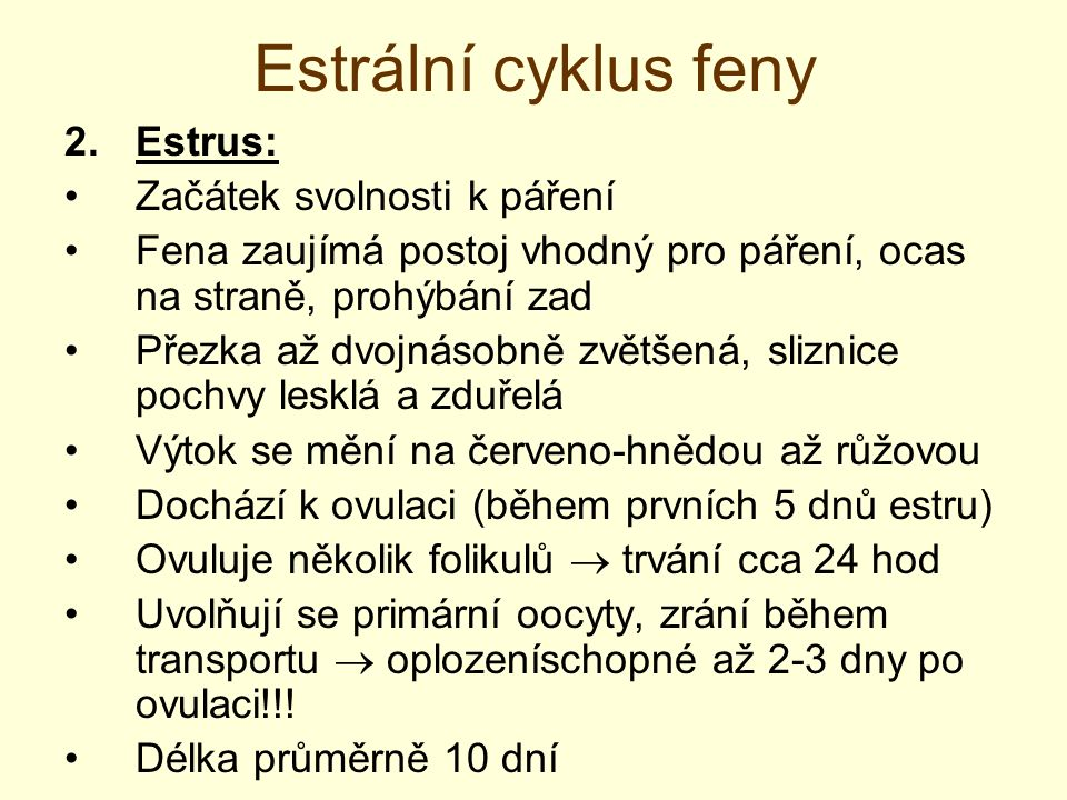 Estrální cyklus feny Estrus: Začátek svolnosti k páření
