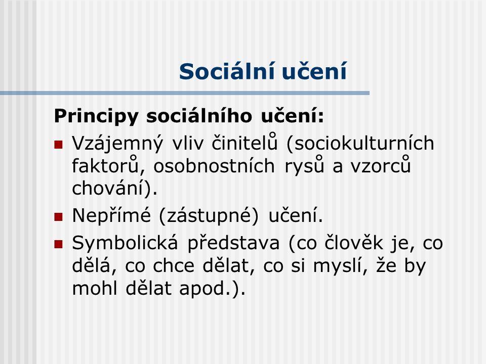 Sociální učení Principy sociálního učení: