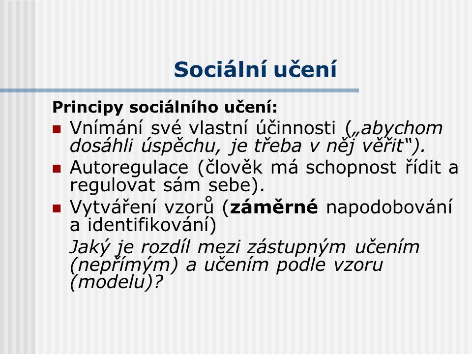 """Sociální učení Principy sociálního učení: Vnímání své vlastní účinnosti (""""abychom dosáhli úspěchu, je třeba v něj věřit )."""