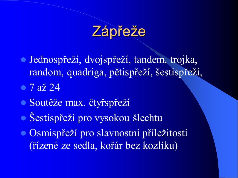 Zápřeže Jednospřeží, dvojspřeží, tandem, trojka, random, quadriga, pětispřeží, šestispřeží, 7 až 24.