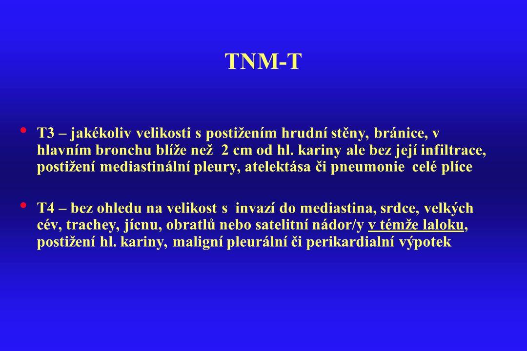 TNM-T