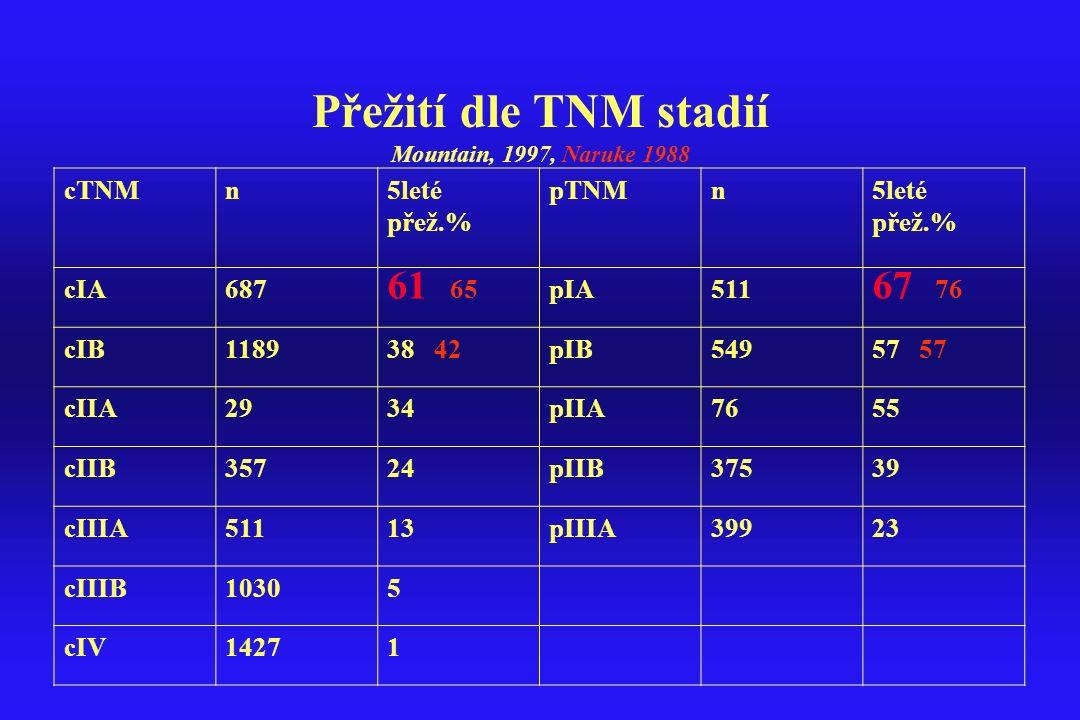 Přežití dle TNM stadií Mountain, 1997, Naruke 1988