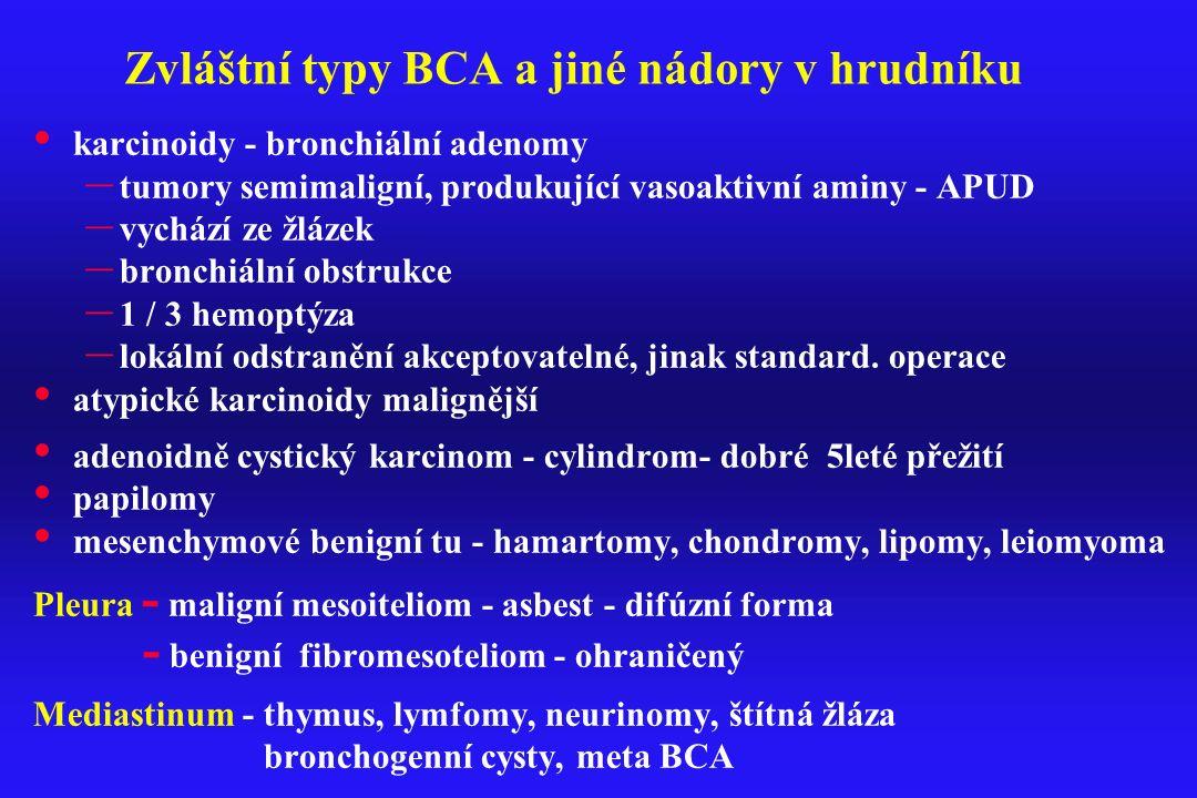 Zvláštní typy BCA a jiné nádory v hrudníku