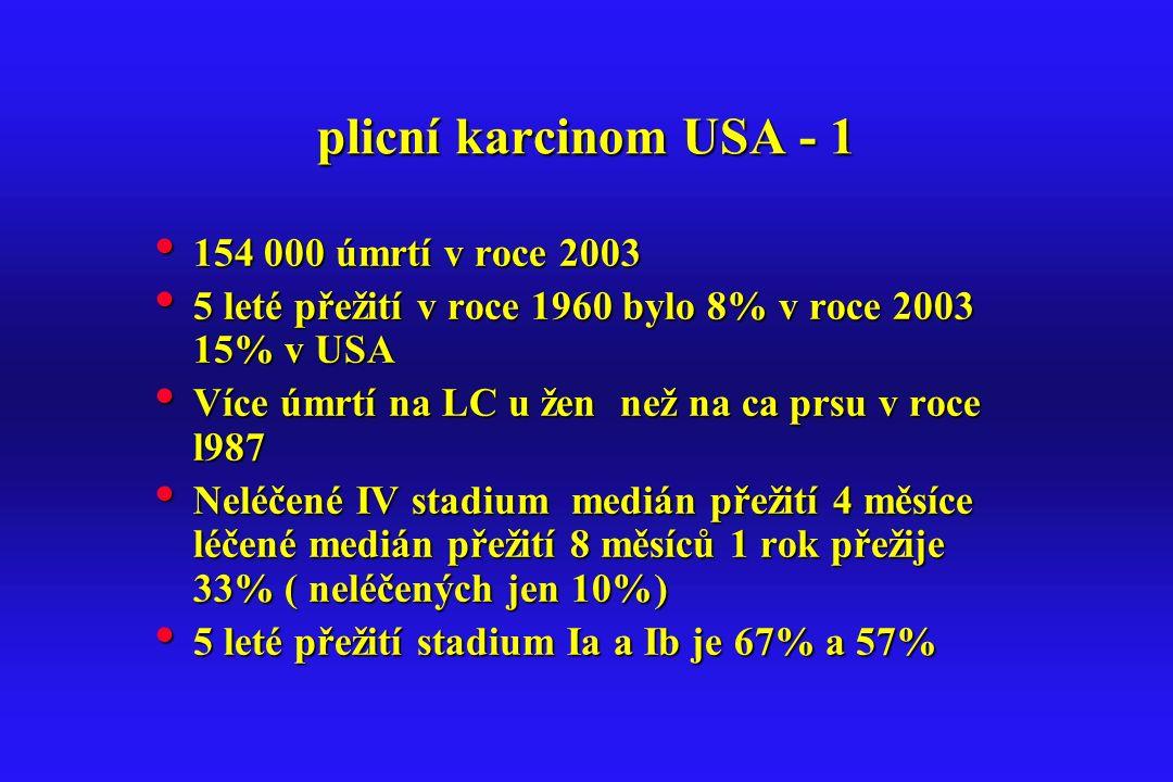 plicní karcinom USA - 1 154 000 úmrtí v roce 2003
