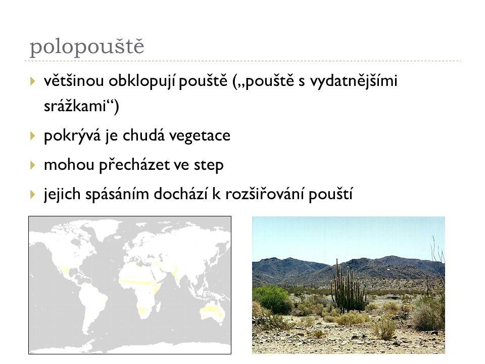 """polopouště většinou obklopují pouště (""""pouště s vydatnějšími srážkami ) pokrývá je chudá vegetace."""