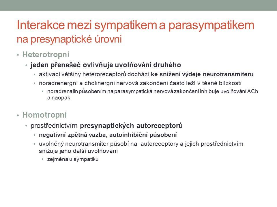Interakce mezi sympatikem a parasympatikem na presynaptické úrovni