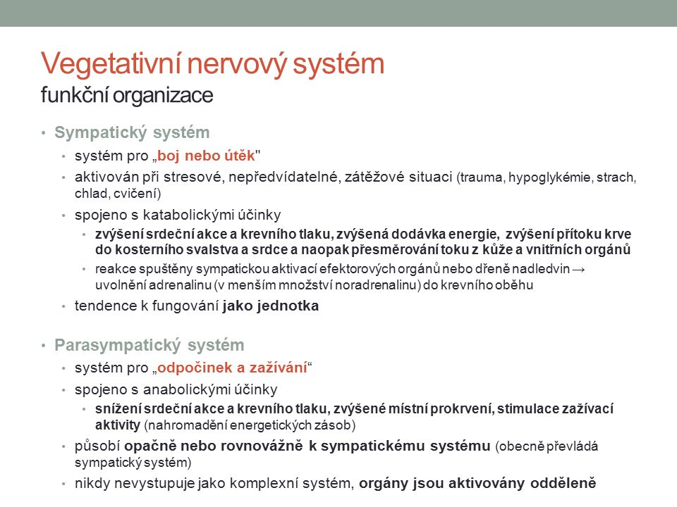 Vegetativní nervový systém funkční organizace