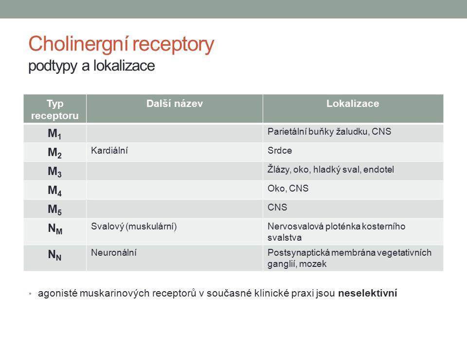 Cholinergní receptory podtypy a lokalizace