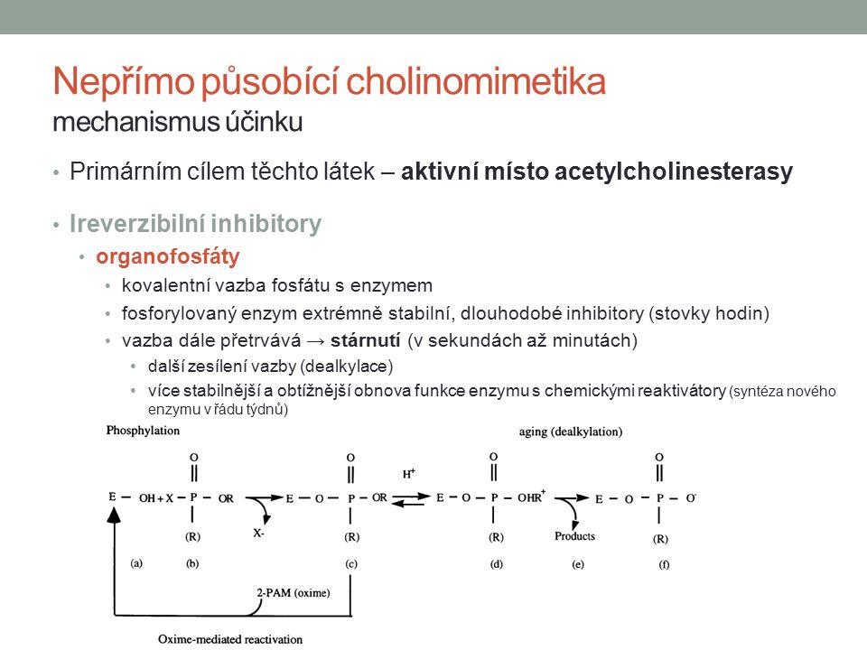 Nepřímo působící cholinomimetika mechanismus účinku