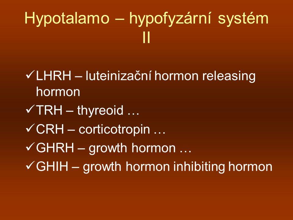 Hypotalamo – hypofyzární systém II