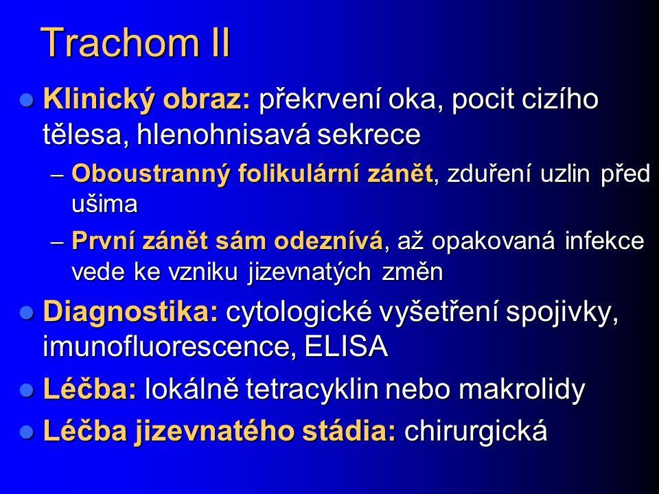 Trachom II Klinický obraz: překrvení oka, pocit cizího tělesa, hlenohnisavá sekrece. Oboustranný folikulární zánět, zduření uzlin před ušima.