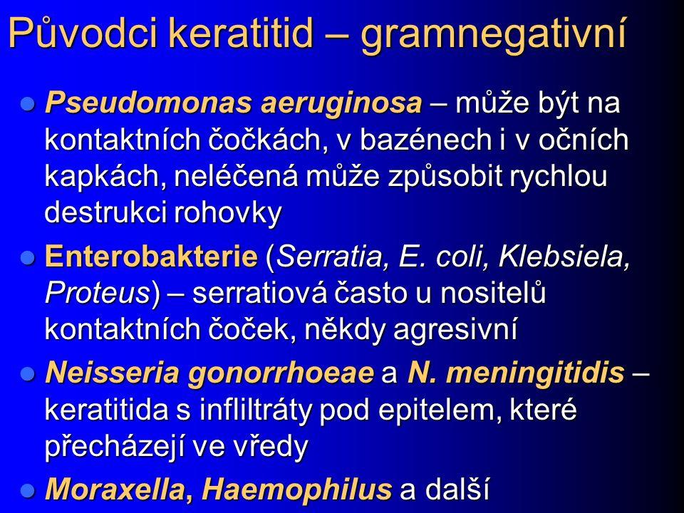 Původci keratitid – gramnegativní