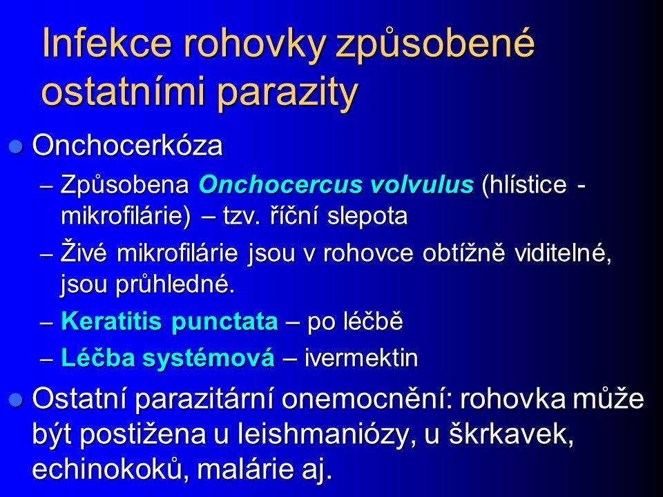 Infekce rohovky způsobené ostatními parazity