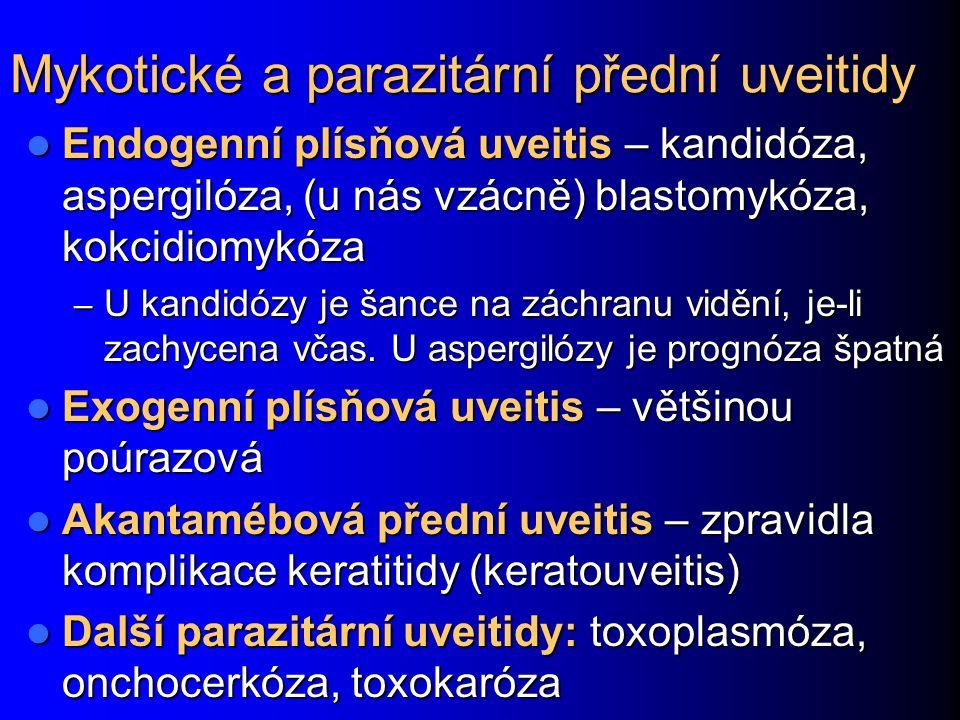 Mykotické a parazitární přední uveitidy