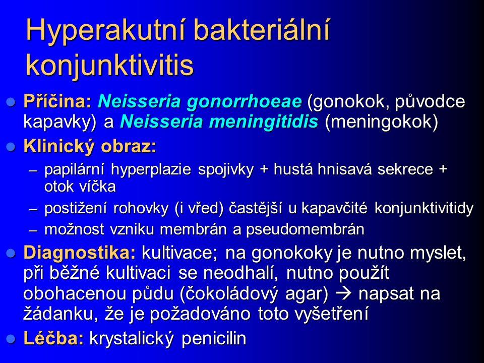 Hyperakutní bakteriální konjunktivitis