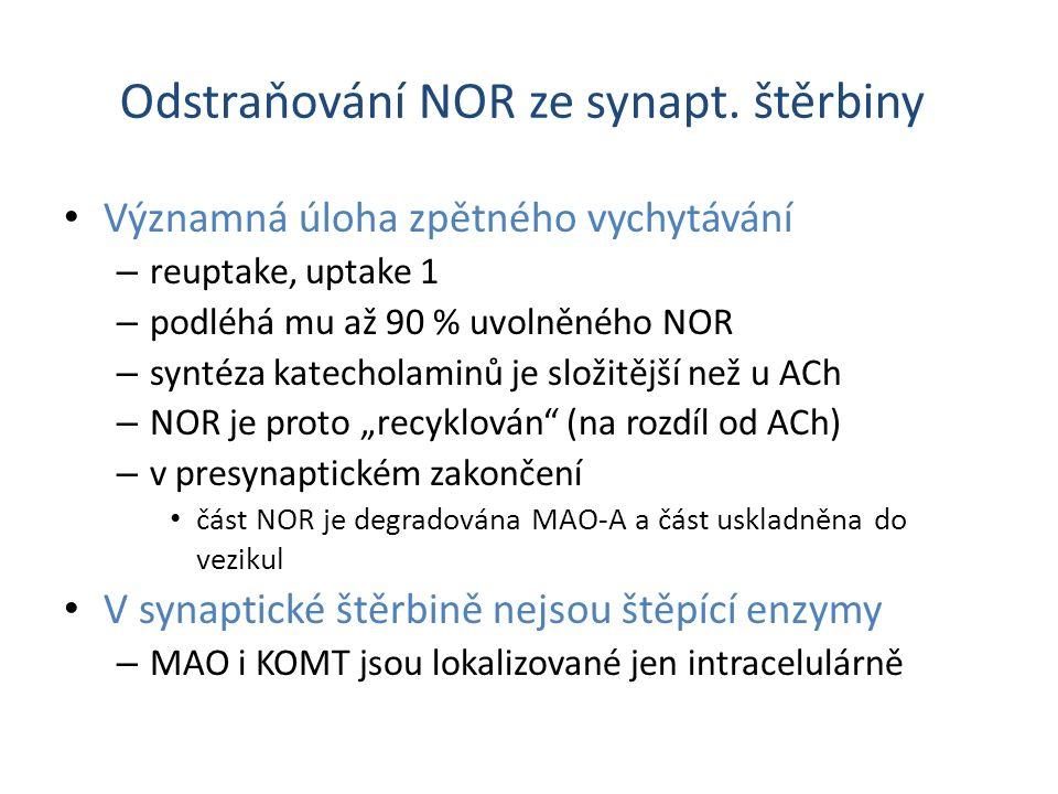Odstraňování NOR ze synapt. štěrbiny