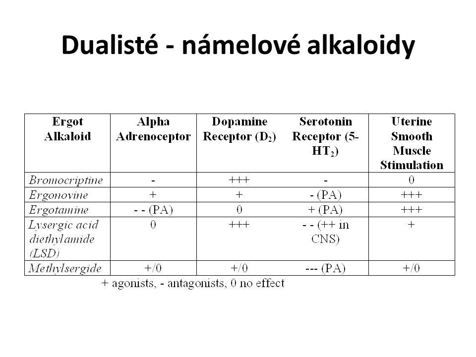 Dualisté - námelové alkaloidy