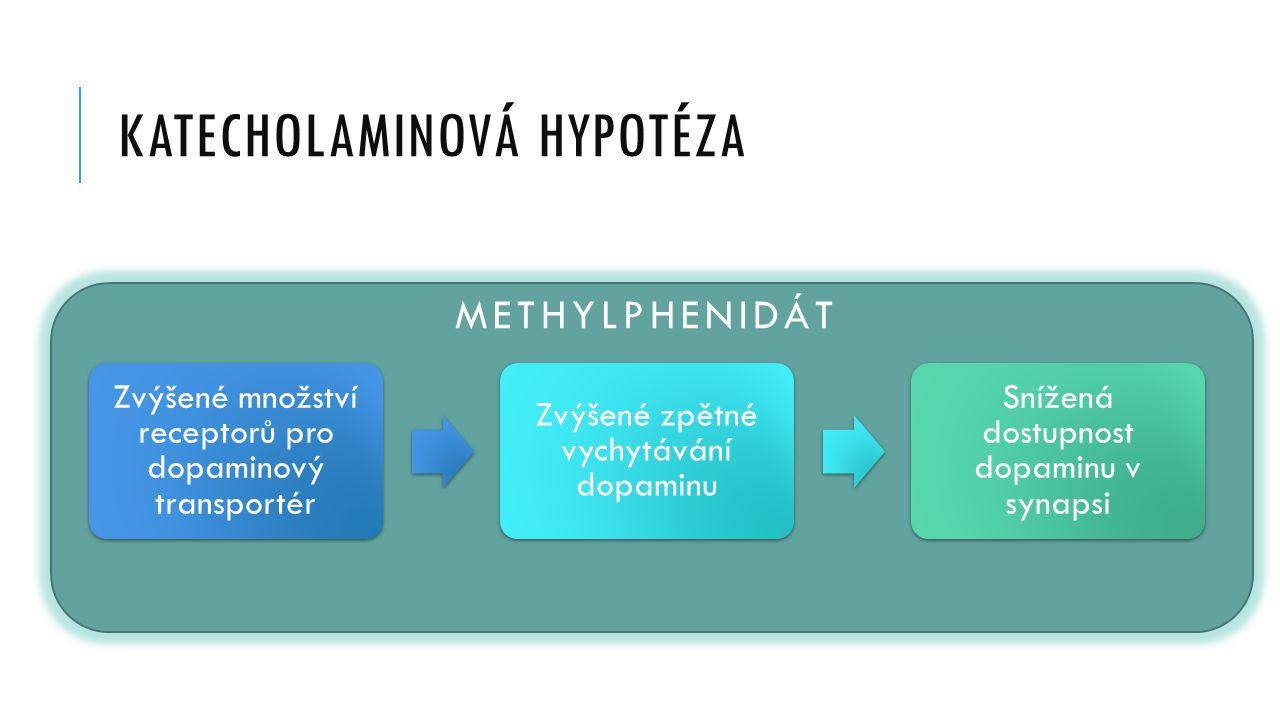 katecholaminová hypotéza