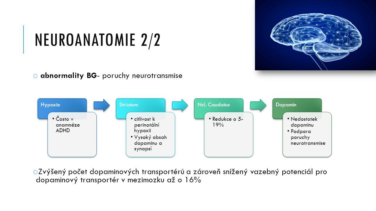 Neuroanatomie 2/2 abnormality BG- poruchy neurotransmise
