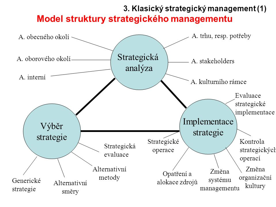 Model struktury strategického managementu