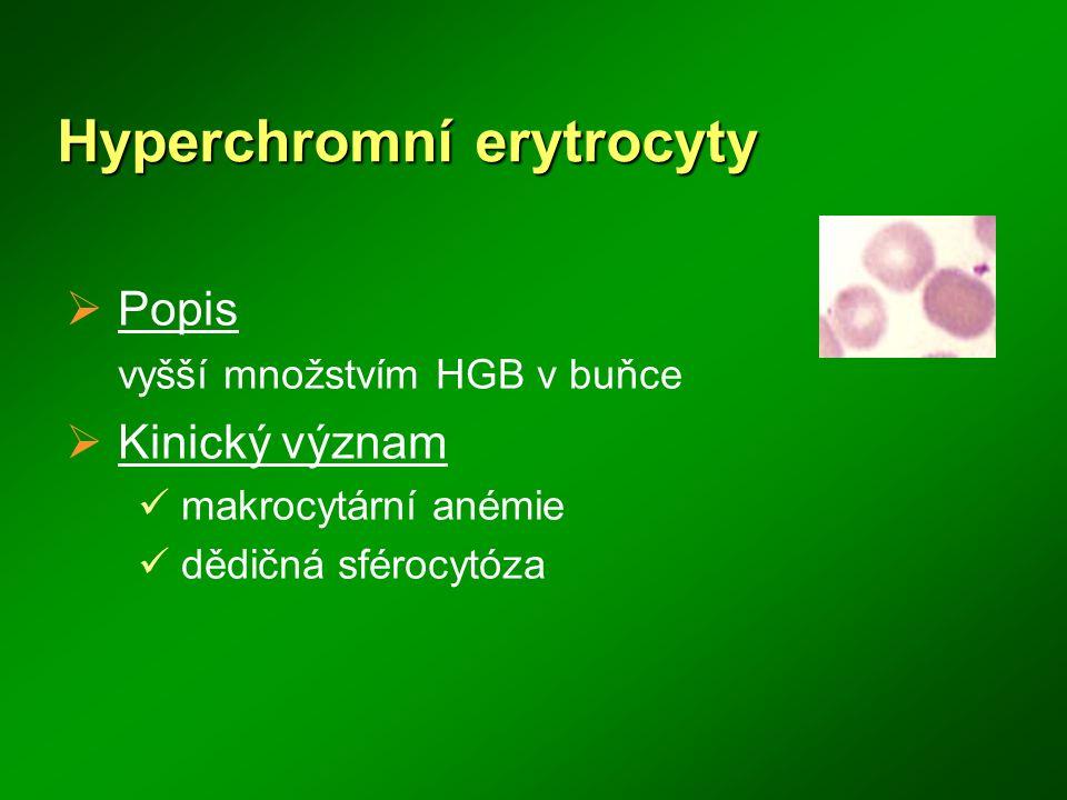 Hyperchromní erytrocyty