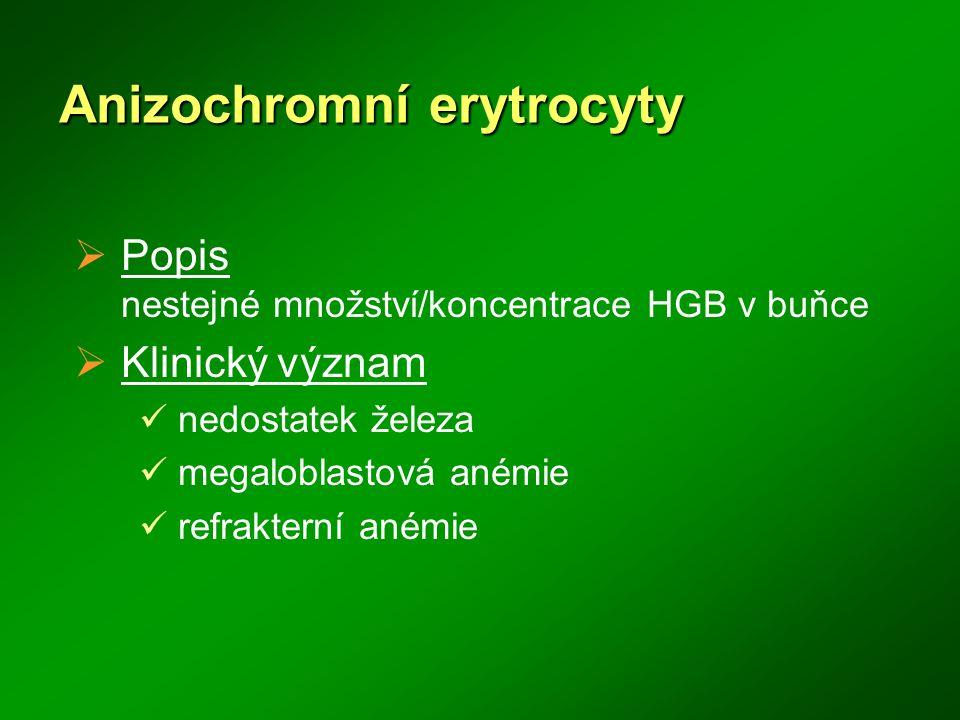 Anizochromní erytrocyty