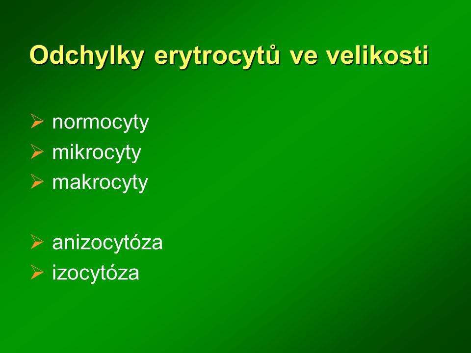 Odchylky erytrocytů ve velikosti