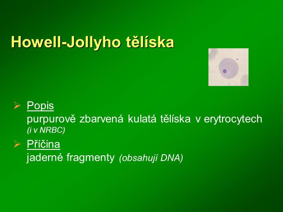 Howell-Jollyho tělíska