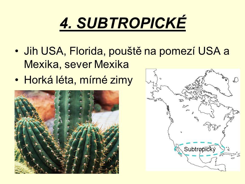 4. SUBTROPICKÉ Jih USA, Florida, pouště na pomezí USA a Mexika, sever Mexika. Horká léta, mírné zimy.