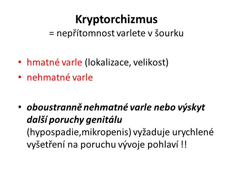 Kryptorchizmus = nepřítomnost varlete v šourku
