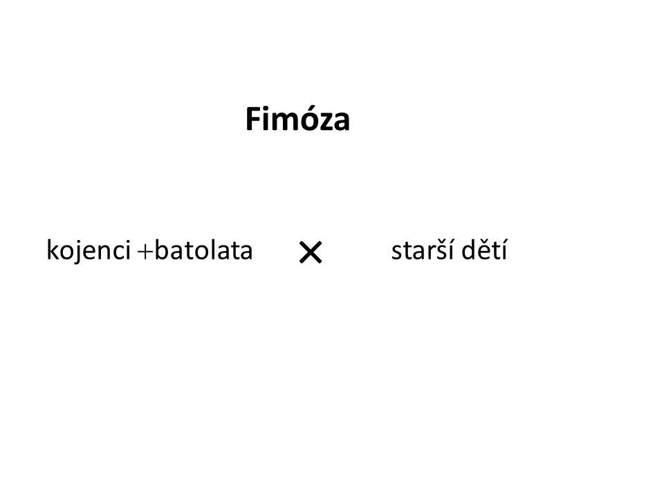 Fimóza × kojenci batolata starší dětí