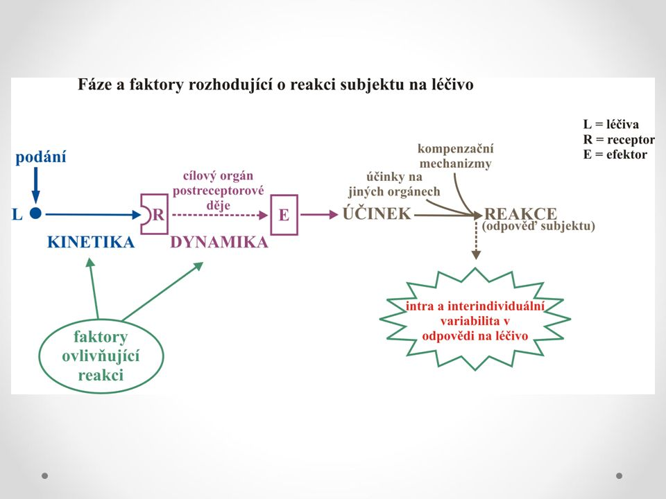 K aj D su ovplyvnene radou faktorov, ktore moduluju ucinok na mol, bunk, tkaniv urovni.