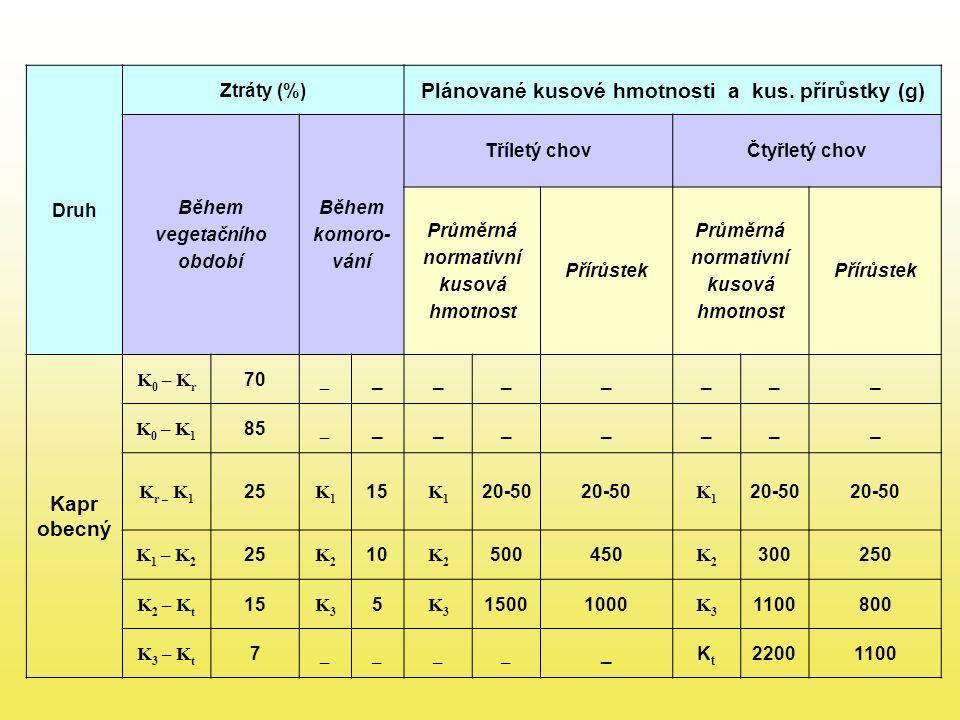 Plánované kusové hmotnosti a kus. přírůstky (g) Kapr obecný
