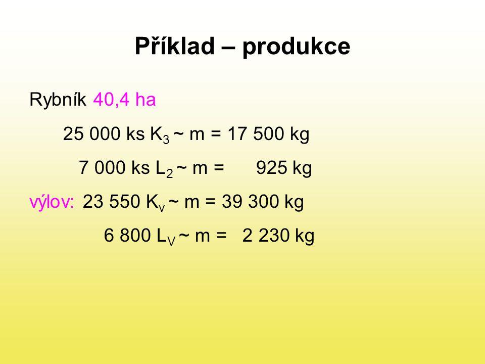 Příklad – produkce Rybník 40,4 ha 25 000 ks K3 ~ m = 17 500 kg