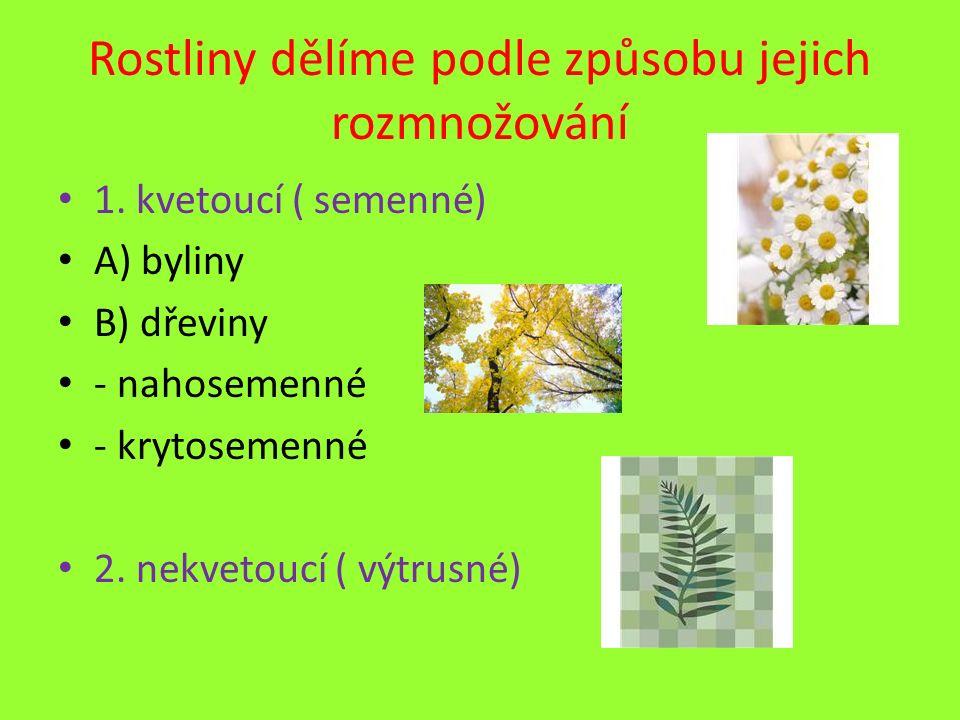 Rostliny dělíme podle způsobu jejich rozmnožování
