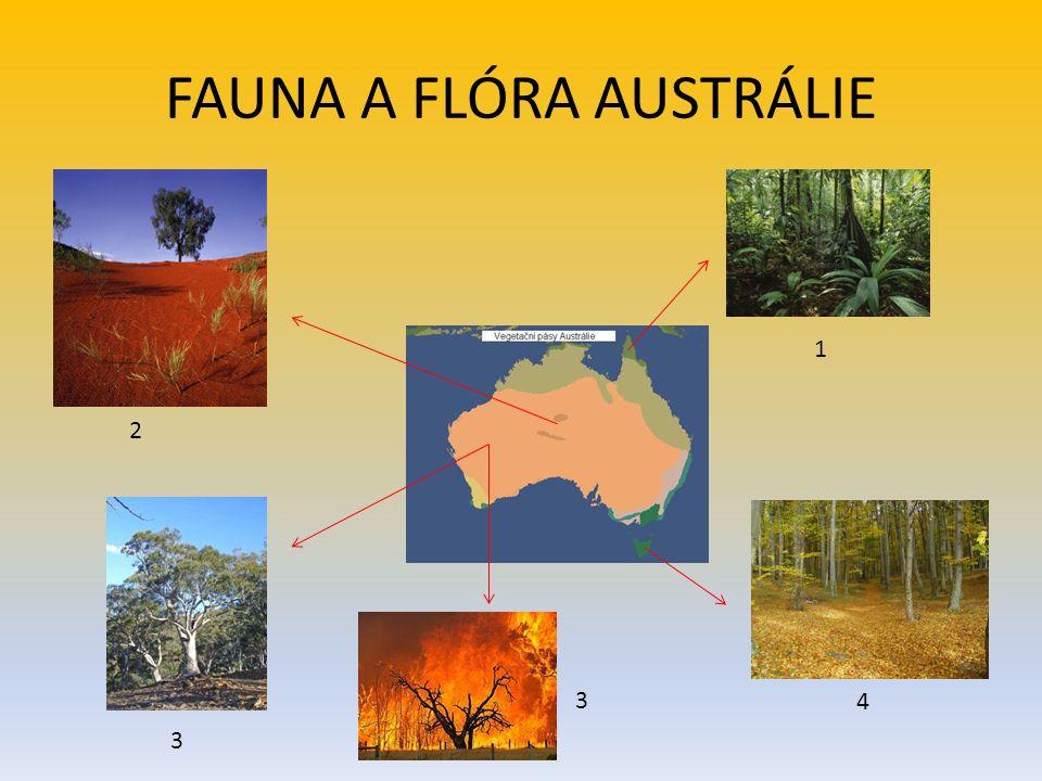 FAUNA A FLÓRA AUSTRÁLIE