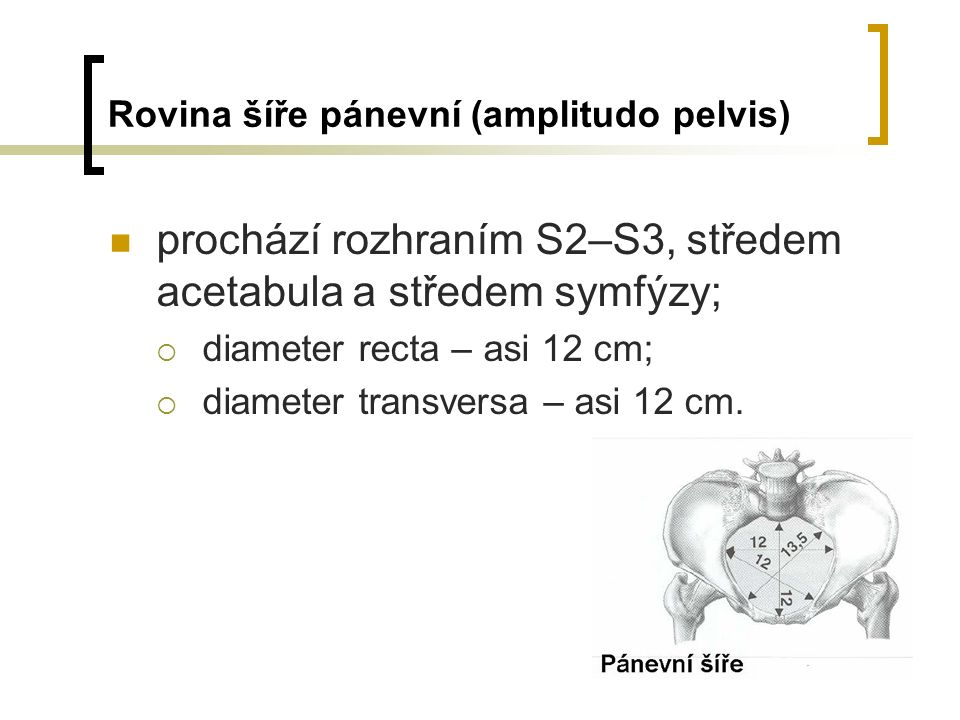 Rovina šíře pánevní (amplitudo pelvis)