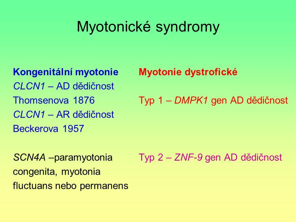Myotonické syndromy Kongenitální myotonie CLCN1 – AD dědičnost