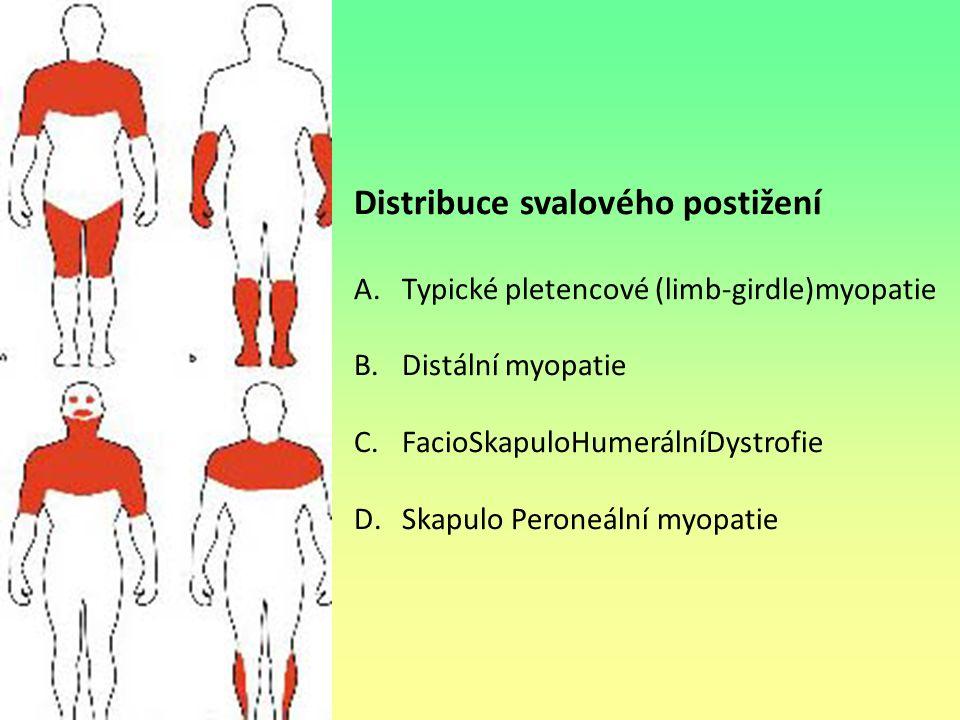 Distribuce svalového postižení