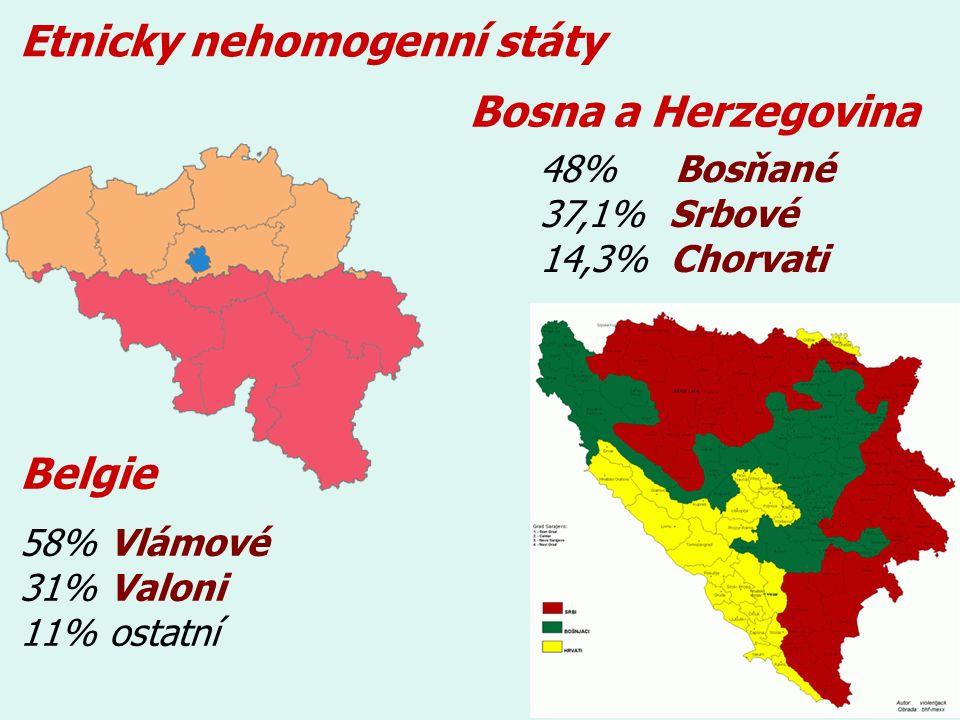 Etnicky nehomogenní státy