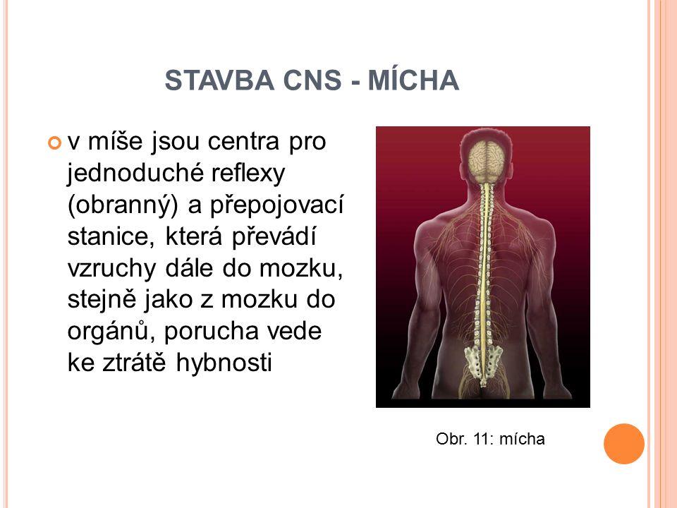 STAVBA CNS - MÍCHA
