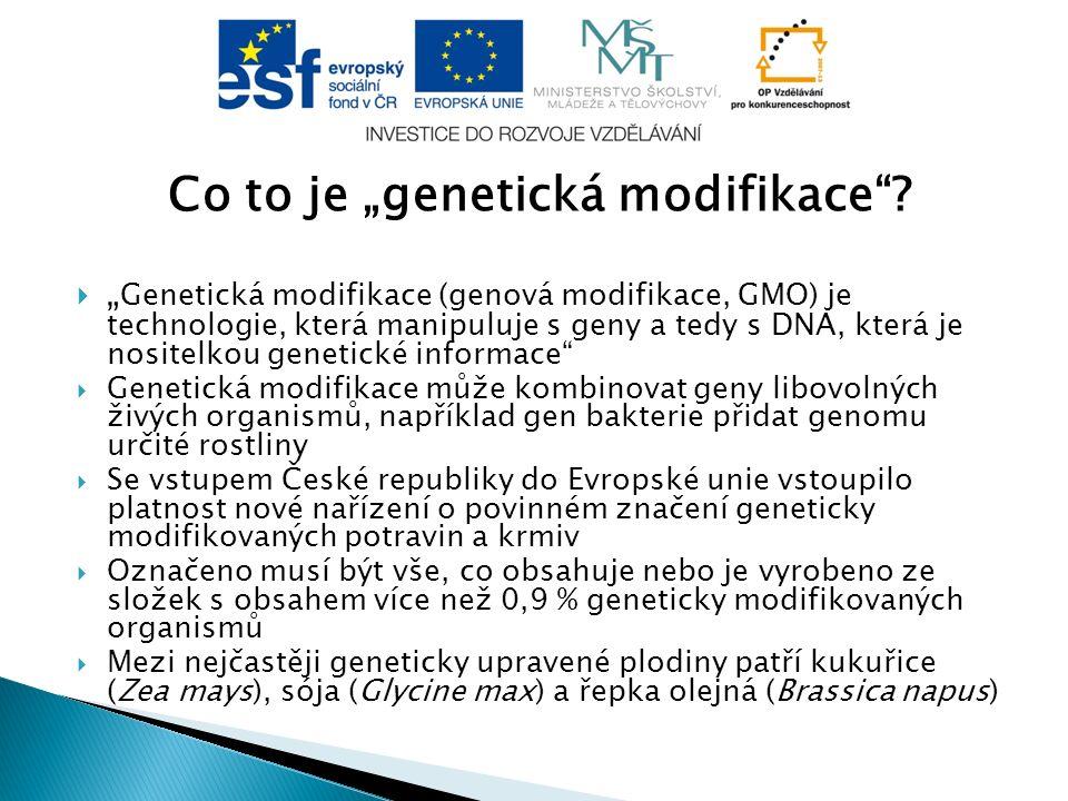 """Co to je """"genetická modifikace"""
