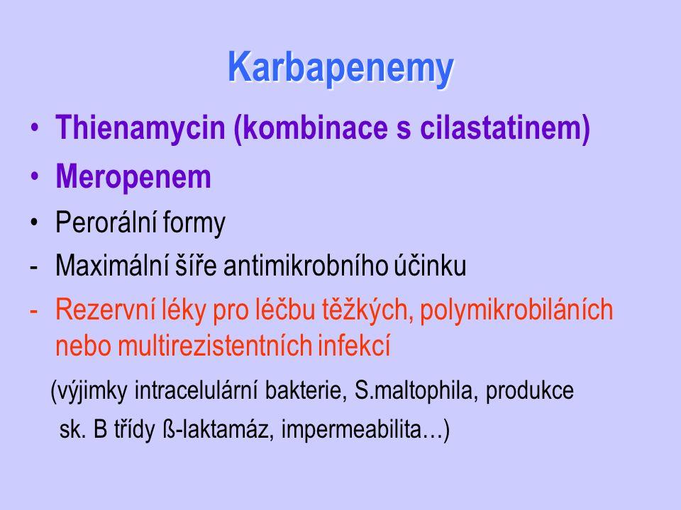 Karbapenemy Thienamycin (kombinace s cilastatinem) Meropenem