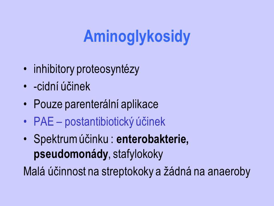 Aminoglykosidy inhibitory proteosyntézy -cidní účinek