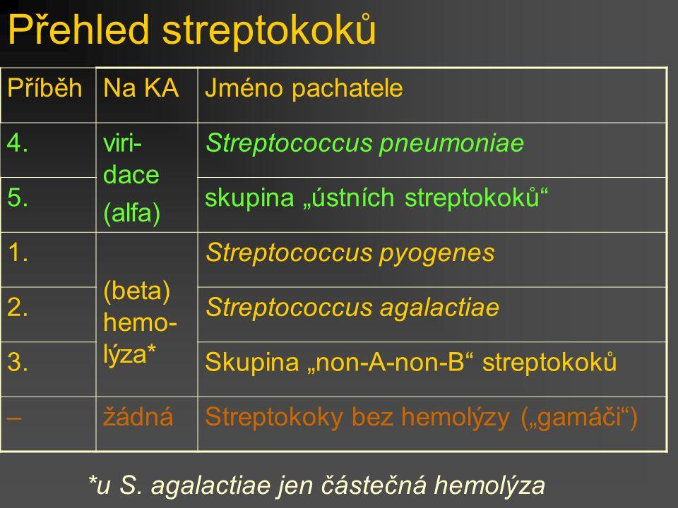 Přehled streptokoků Příběh Na KA Jméno pachatele 4. viri- dace (alfa)