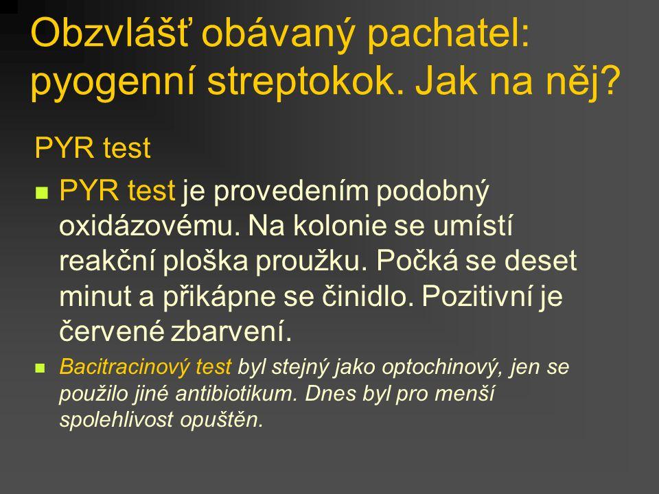 Obzvlášť obávaný pachatel: pyogenní streptokok. Jak na něj