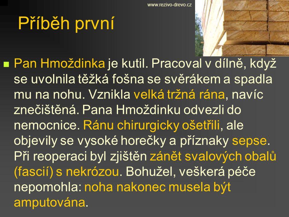 www.rezivo-drevo.cz Příběh první.