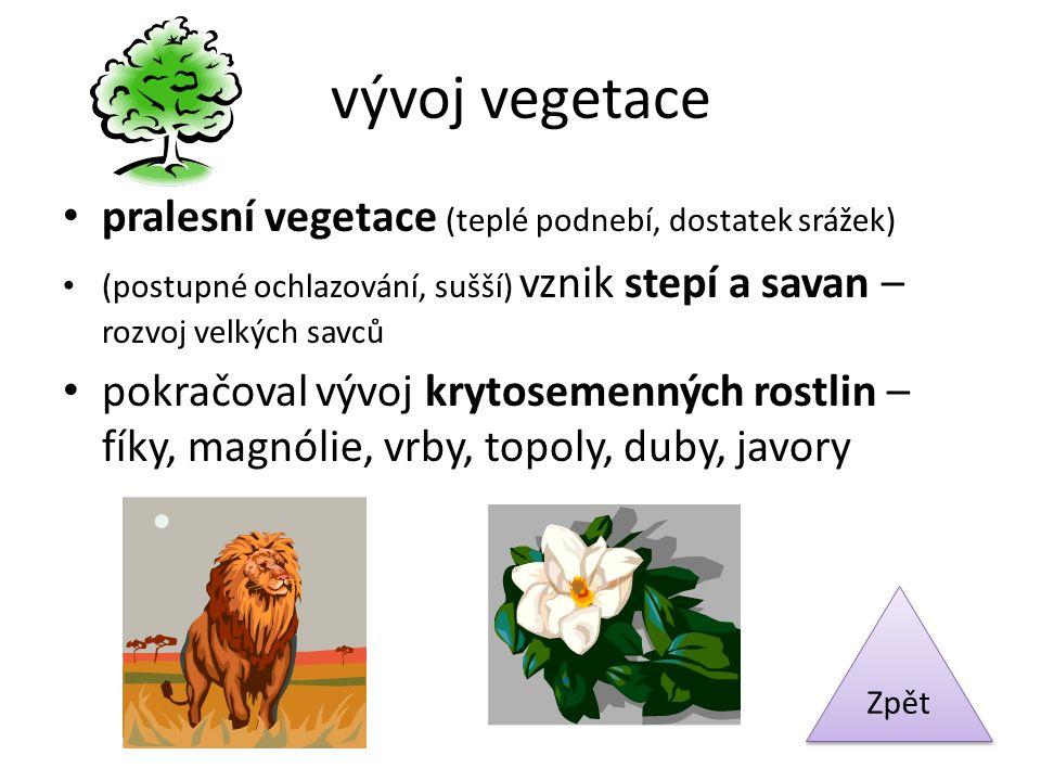vývoj vegetace pralesní vegetace (teplé podnebí, dostatek srážek)